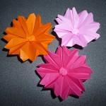 折り紙でコスモス 簡単なものや立体的な折り方で作ってみる