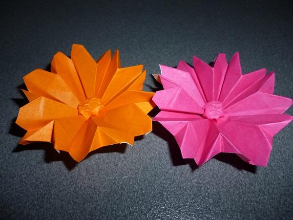 ハート 折り紙 折り紙 コスモス 立体 : pleasantdays.info